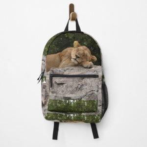 art for sale freeport illinois lion