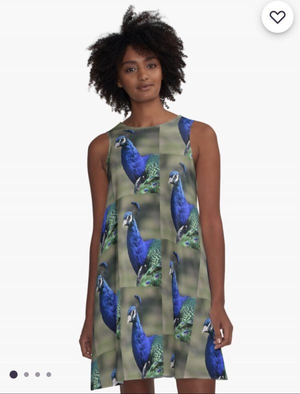 art for sale freeport illinois dress